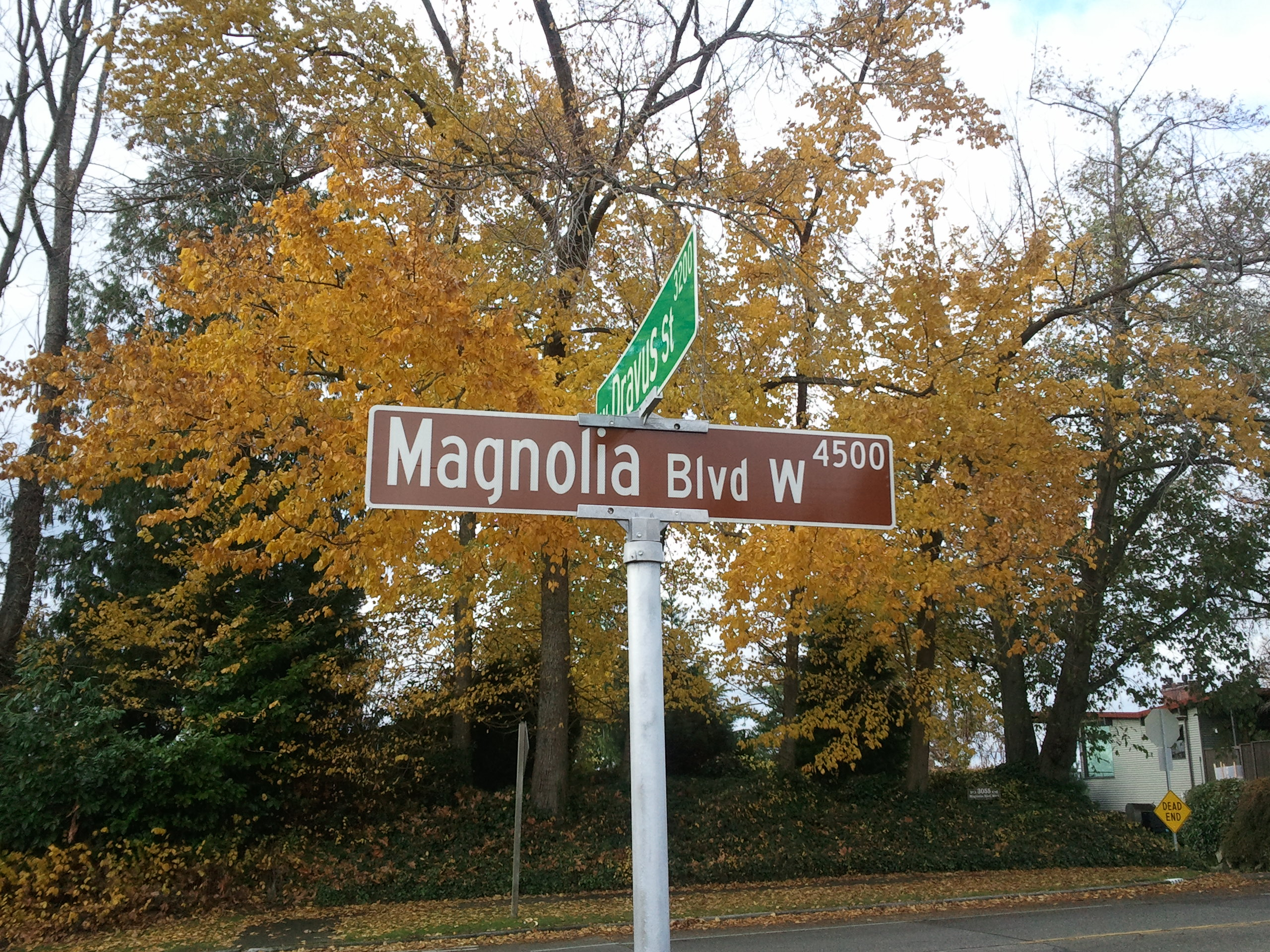 Magnolia Blvd Homes